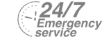 24/7 Emergency Service Pest Control in Woodford Green, Woodford, IG8. Call Now! 020 8166 9746
